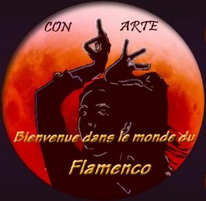 Con Arte, le monde du Flamenco en Suisse