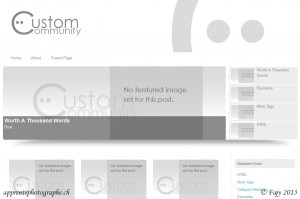 "Le thème WordPress ""Custom Community"" de themekraft.com"