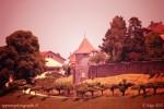 La tour du Sauvage ou tour de la Cuernaire vue depuis Billens