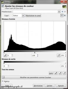 L'histogramme d'exposition (ou la courbe des niveaux) de la photo du cochon sauvage