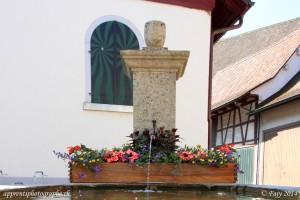 Une des fontaines fleuries de Stein am Rhein