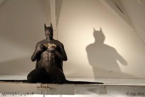 """Batman est à """"La Maison d'Ailleurs"""""""