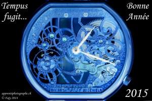 Tempus fugit - Montre Daniel Aubert, musée international d'horlogerie de La Chaux-de-Fonds - Bonne et heureuse année 2015