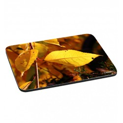 Mousepad - Autumn leaves