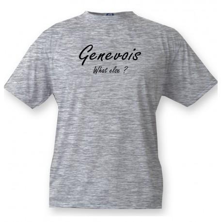 T-Shirt humoristique mode homme - Genevois, What else, Ash Heater
