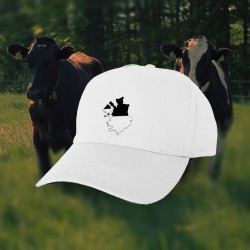 Baseball Cap - canton of Fribourg in 3D