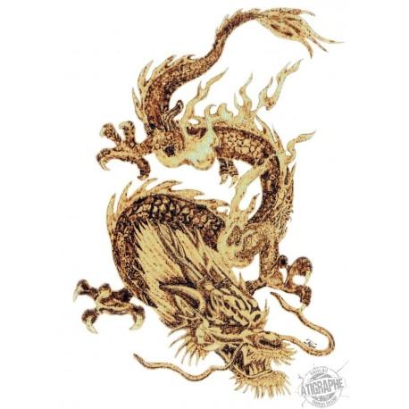 "Sweatshirt blanc à capuche ""Dragon"" by Ferwal, Couleur Pyro"