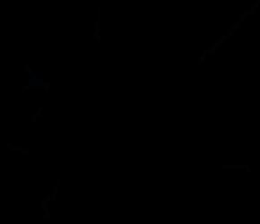Le shop de aTigraphe® - apprentiphotographe.ch