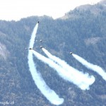 Sion Air Show 2011, Breitling Jet Team