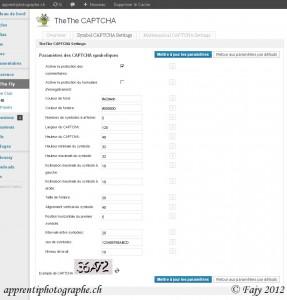 Fenêtre de configuration de TheThe CAPTCHA