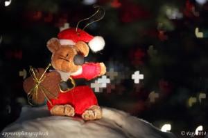 L'ourson de Noël sur fond de bokeh en forme de croix suisse, réalisé avec le Macro 60mm