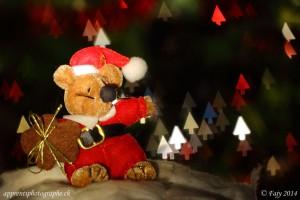 Un ourson de Noël sur fond de bokeh en forme de sapins. Photo prise avec un objectif Macro 100mm f2.8