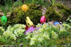 Le lapin gardien appelle ses oeufs et leurs parle afin de les rassurer