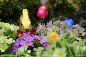 Apaisés par le sérieux du lapin gardien, les oeufs de Pâques se tranquillisent