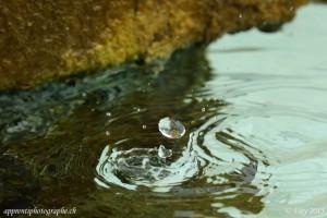un autre splash d'une goutte lors de sa rencontre avec l'eau du bassin