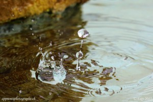 Splash d'eau en couronne dans une fontaine, pris à haute vitesse