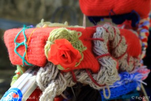 Une rose accrochée au porte-bagage du vélo en laine